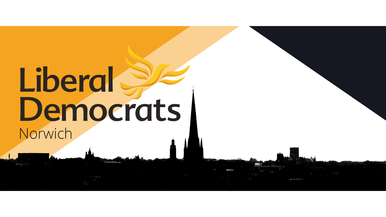 Norwich Lib Dems website banner